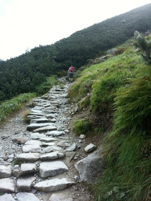 trail black trail mountains