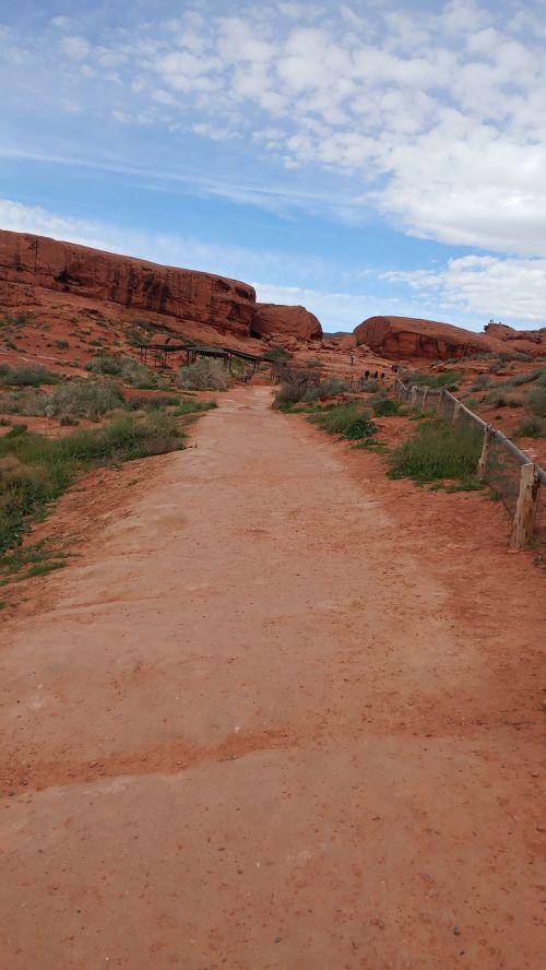 trail hiking nature