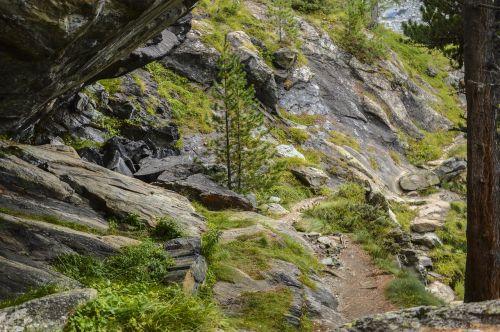 trail hiking swiss alps