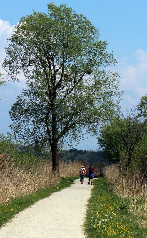 trail wanderer hike