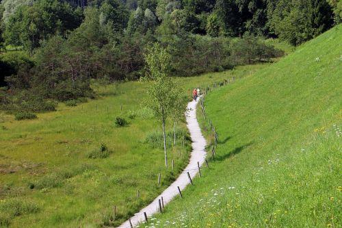 takas,toli,gamta,pieva,medžiai,juostos,purvo kelias,komercinis kelias,vaikščioti,žygiai,ganykla,žalias