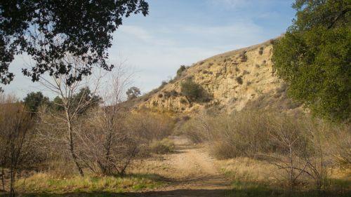 Trail Through California Wilderness