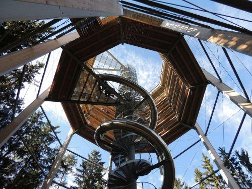 trail treetops trip slide