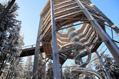 trail treetops lipno czech republic