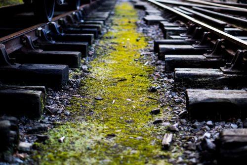 train train tracks railway