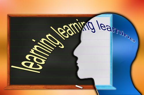 training opportunities learn