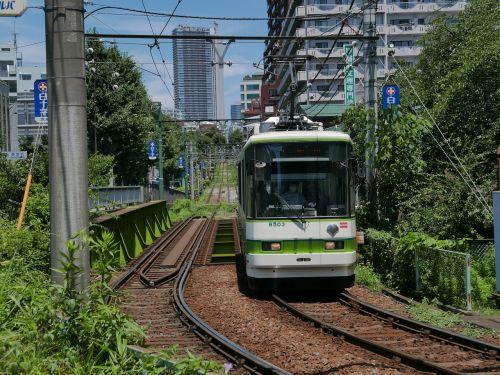 tram train tracks