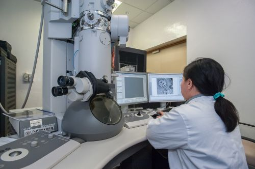 transmission electron microscope universiti malaysia sabah biotechnology research institute