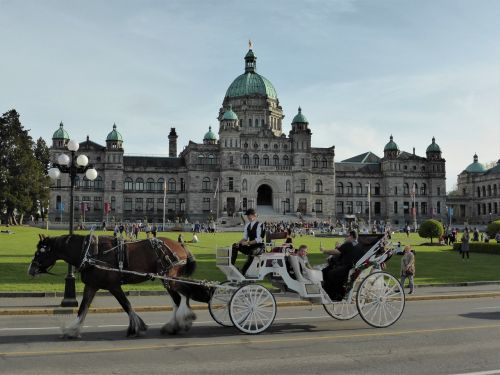 transport coach horse and carriage