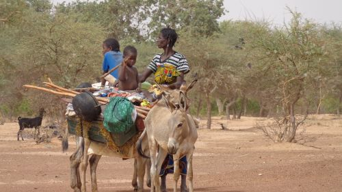 transportation exodus family