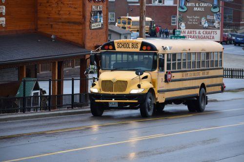 transportation system travel bus
