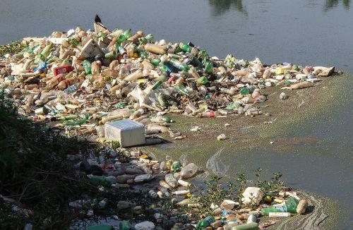 trash river pines rubble