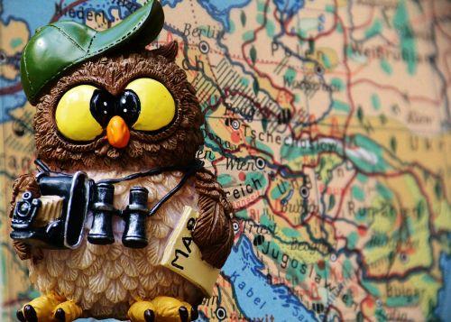 travel tourist owl