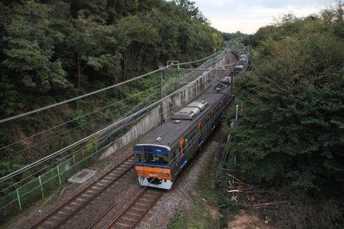 travel  nature  train
