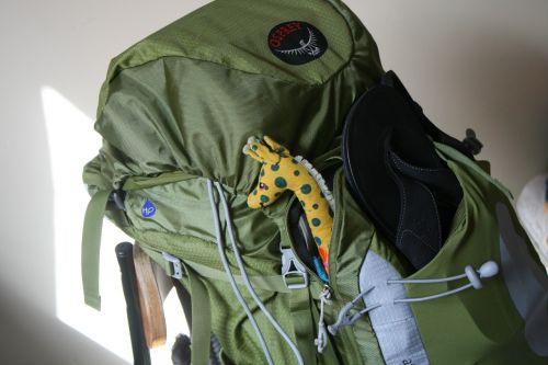 travel backpack giraffe