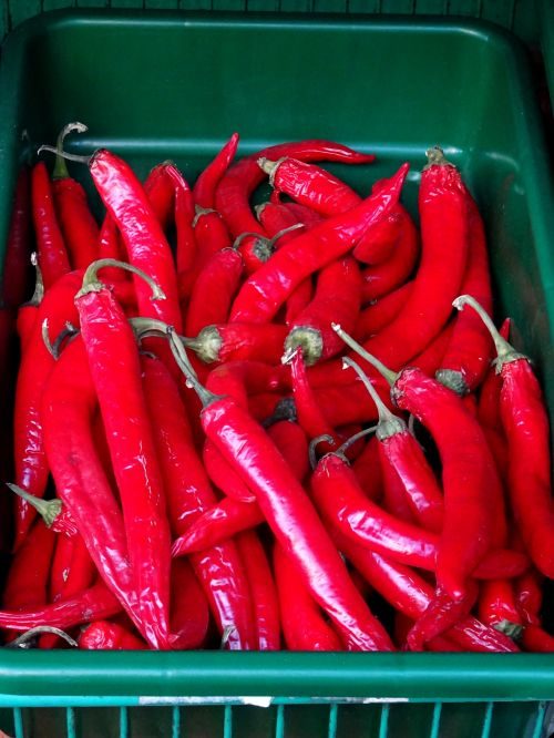 Tray Of Red Chilies