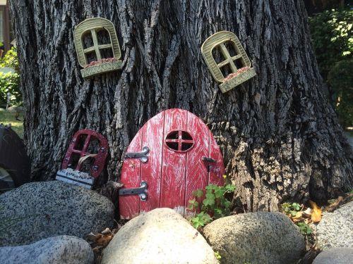 tree house rocks