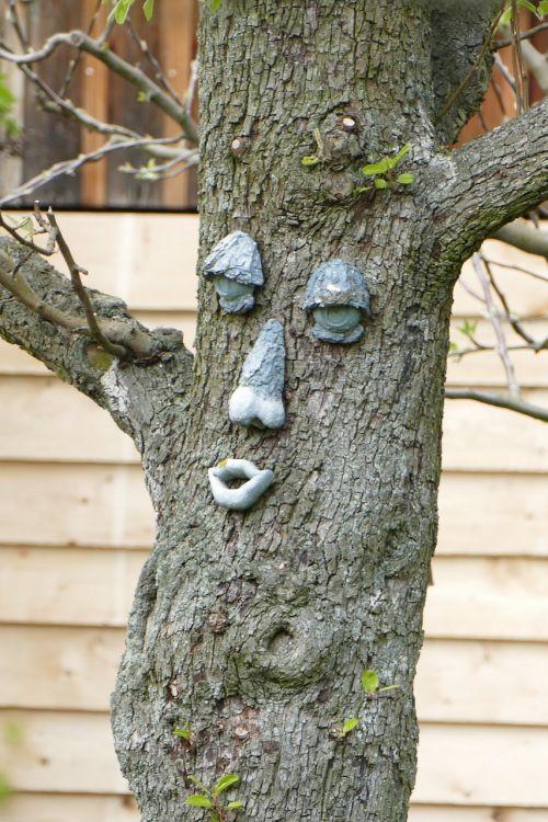 tree face funny