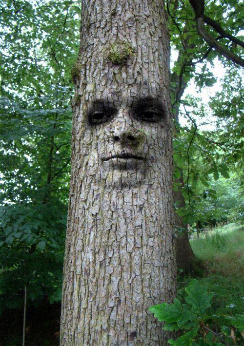 tree man face