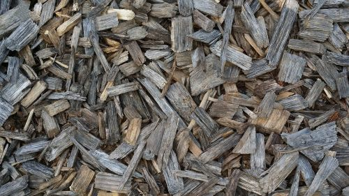 tree wood chips wood background