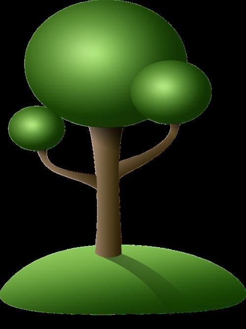 tree island green