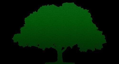 tree minimal gradient overlay