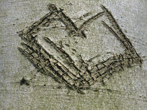 tree bark heart