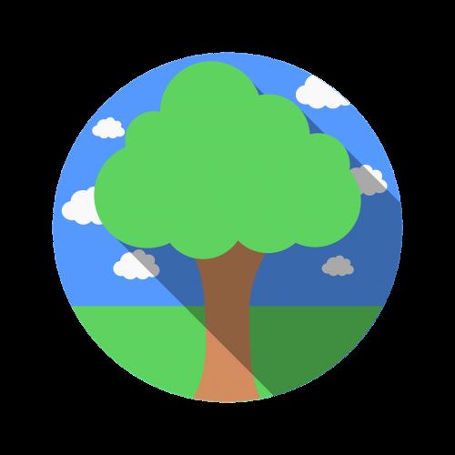 tree plant nature