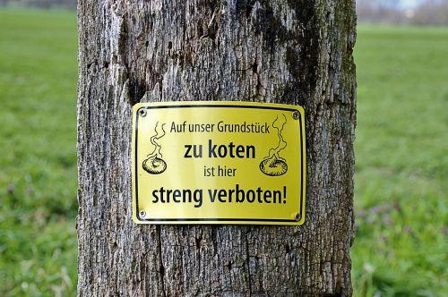 tree shield funny