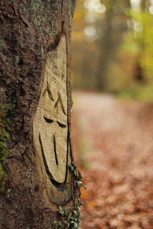 tree autumn laugh