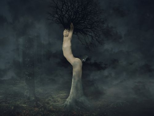 tree woman forest