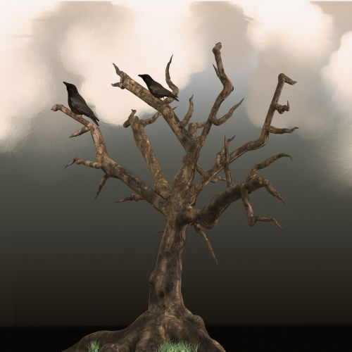 tree raven clouds