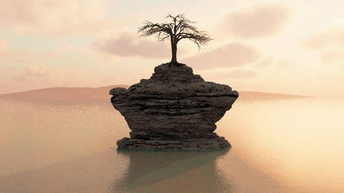 tree water island