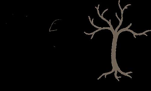 tree white brown