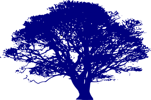 medis,gamta,aplinka,ekologija,sezonas,lapai,mėlynas,vaizdingas,mediena,tvarus,karta,ištekliai,inovacijos,nemokama vektorinė grafika