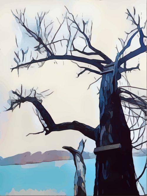 tree book cover lake
