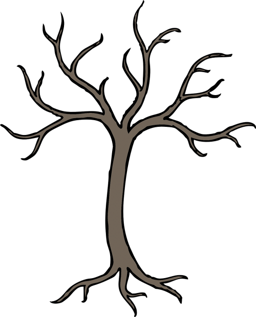 tree winter grey