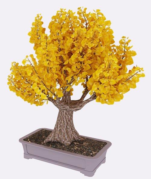 tree  render  3d