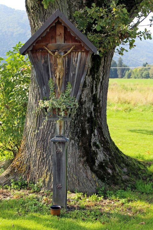 tree wayside cross cross