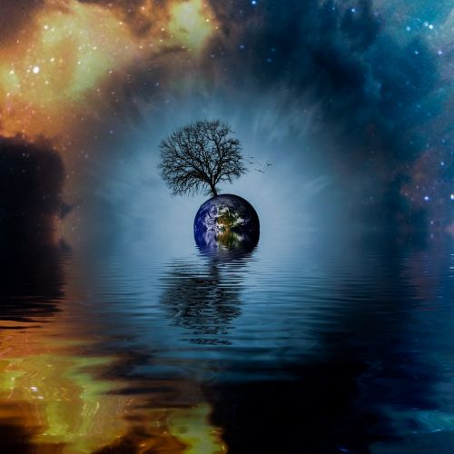 tree world universe