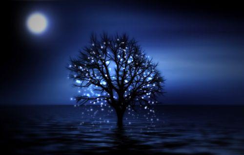 tree night snowflake