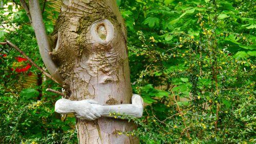 tree green poor