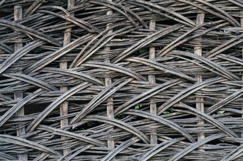tree weaving summer