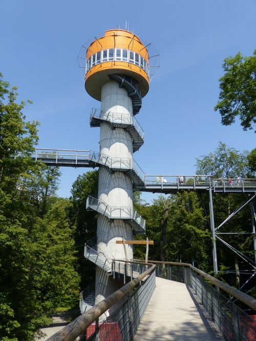 tree crown path hainich tower