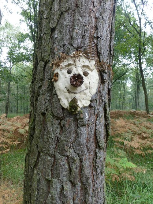 tree face tree spirit face