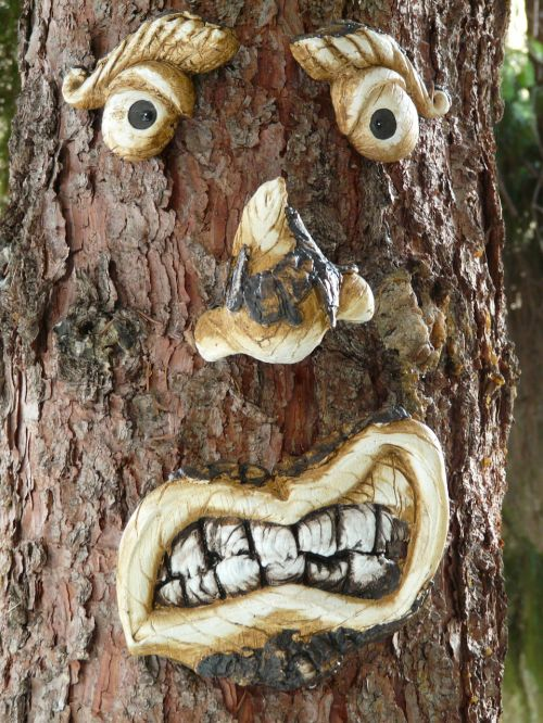 tree face tree spirit tree