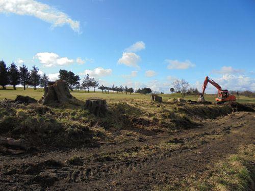 tree felling jcb construction