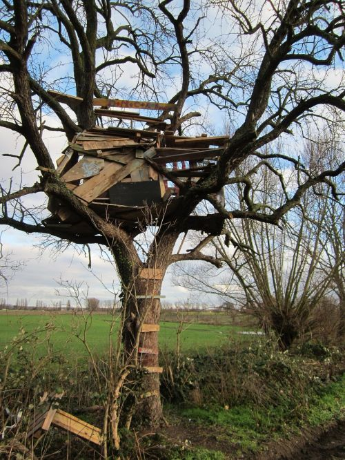 tree house deteriorated old