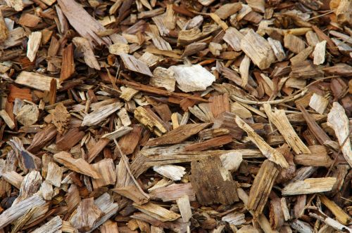 Tree Mulch Texture Background