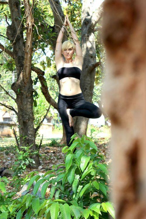 tree pose yoga ashtanga